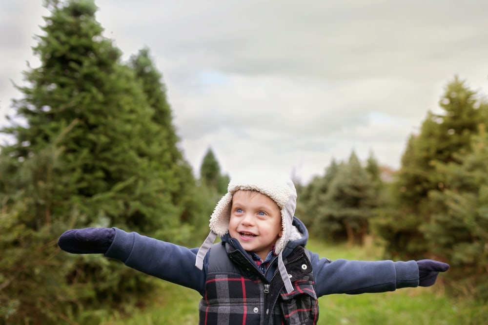 more from last Christmas at the tree farm | carolina hanna photo montreal family photography