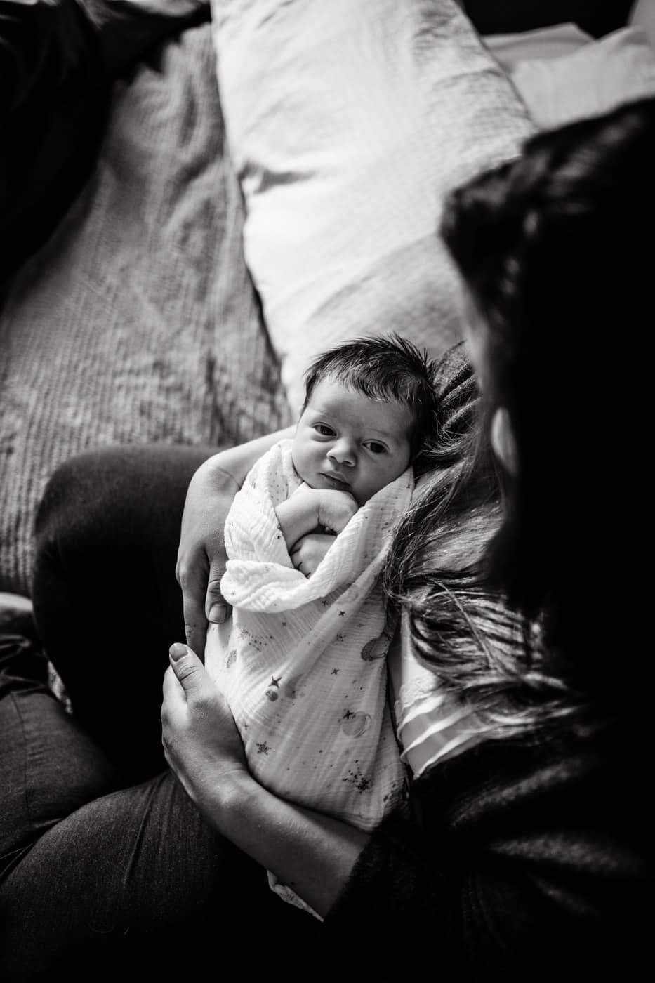 montreal newborn photographer Carolina Hanna photo